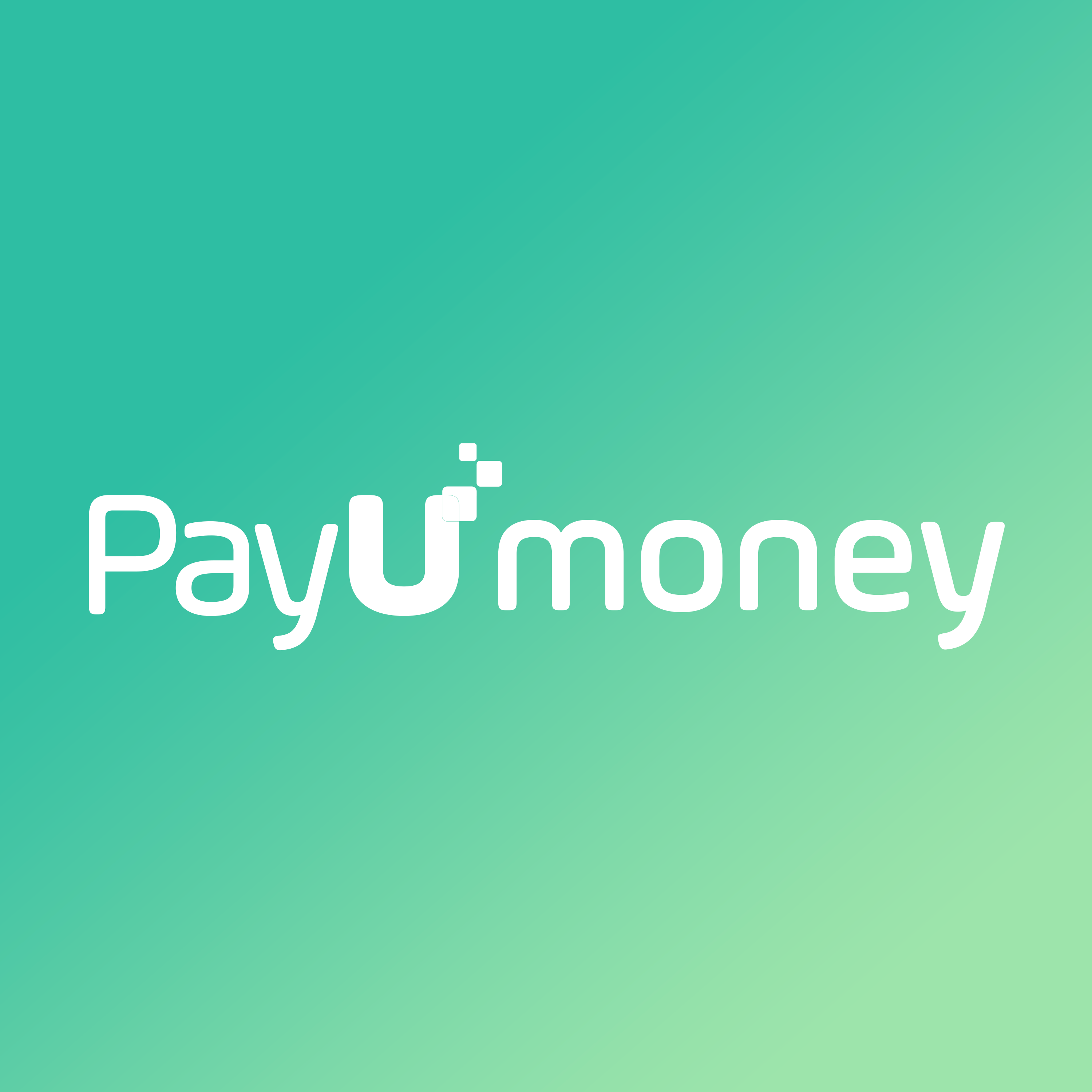 All You Need To Know About Your Website & Payment Gateway